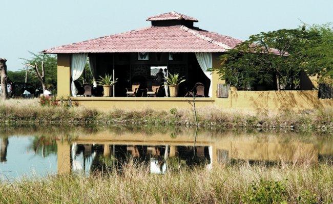 The Black Buck Lodge